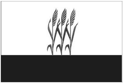 Флаг Камышина с 2003 года ч/б
