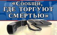 На территории Волгоградской области проводится второй этап Всероссийской антинаркотической акции «Сообщи, где торгуют смертью»