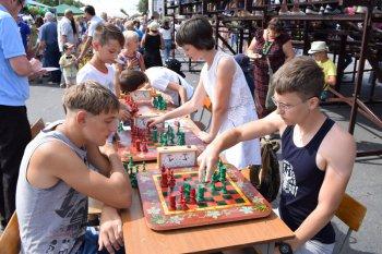 Итоги традиционных конкурсов Камышинского арбузного фестиваля
