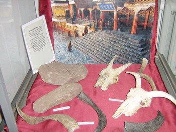 Выставка загадочный Тибет