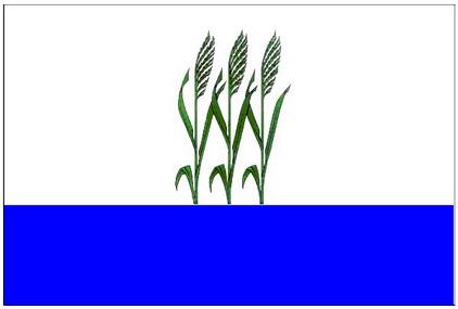 Флаг Камышина с 2003 года